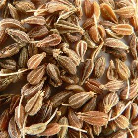 http://www.semena-rostliny.cz/10883-thickbox/anyz-pimpinella-anisum-plod-50g.jpg
