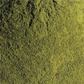 Mladý zelený ječmen 50g