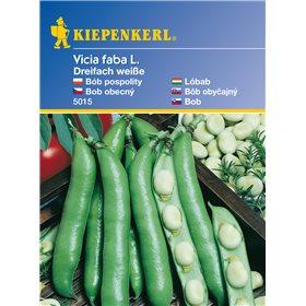 http://www.semena-rostliny.cz/11098-thickbox/fazole-ndhern-bl-semena-fazole.jpg