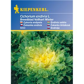 http://www.semena-rostliny.cz/11114-thickbox/lov-hrek-kl-rheinl-semena-hrachu.jpg
