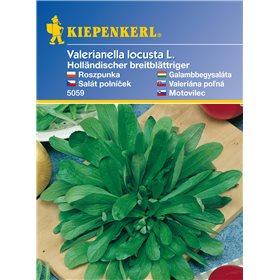 http://www.semena-rostliny.cz/11120-thickbox/polnek-holandsk-irokolist-semena-polnku.jpg