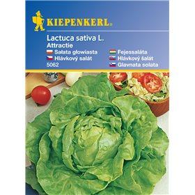http://www.semena-rostliny.cz/11122-thickbox/hlvkov-salt-attractie-semena-hlvkovho-saltu.jpg