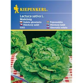 http://www.semena-rostliny.cz/11124-thickbox/hlvkov-salt-maiknig-semena-hlvkovho-saltu.jpg