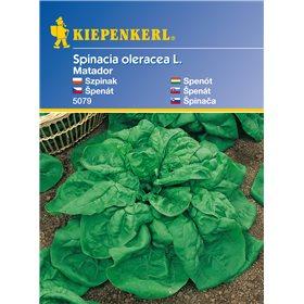 http://www.semena-rostliny.cz/11133-thickbox/pent-matador-kk-semena-pentu.jpg