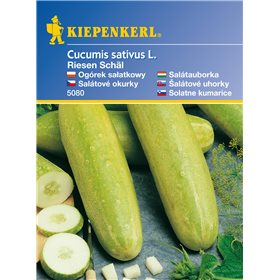 http://www.semena-rostliny.cz/11135-thickbox/obrovsk-loupan-okurka-semena-okurky.jpg