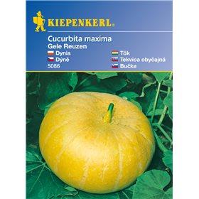 http://www.semena-rostliny.cz/11139-thickbox/dn-gele-reuzen-semena-dn.jpg