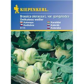 http://www.semena-rostliny.cz/11143-thickbox/brukev-delikate-bl-semena-brukve.jpg