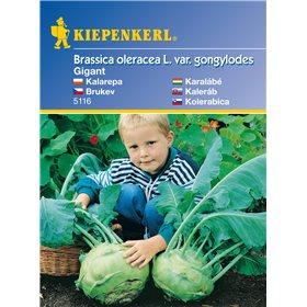 http://www.semena-rostliny.cz/11145-thickbox/brukev-gigant-semena-brukve.jpg