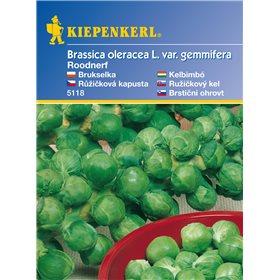 http://www.semena-rostliny.cz/11147-thickbox/rikov-kapusta-roodnerf-semena-rikov-kapusty.jpg