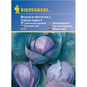 http://www.semena-rostliny.cz/11149-thickbox/kapusta-roodkop-semena-kapusty.jpg