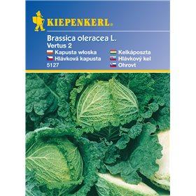 http://www.semena-rostliny.cz/11153-thickbox/hlvkov-kapusta-vertus-semena-kapusty.jpg