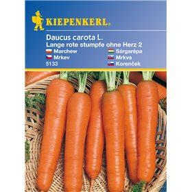 http://www.semena-rostliny.cz/11157-thickbox/mrkev-dlouh-rstoherz-semena-mrkve.jpg