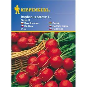 http://www.semena-rostliny.cz/11169-thickbox/edkvika-saxa-3-semena-edkviek.jpg