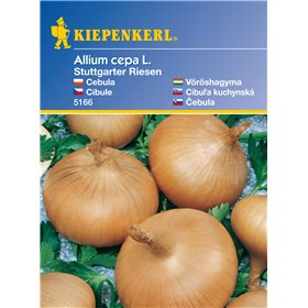 http://www.semena-rostliny.cz/11177-thickbox/cibule-stuttgobrovsk-semena-cibule.jpg