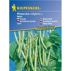 http://www.semena-rostliny.cz/11179-thickbox/kekov-fazole-maxi-semena-fazole.jpg