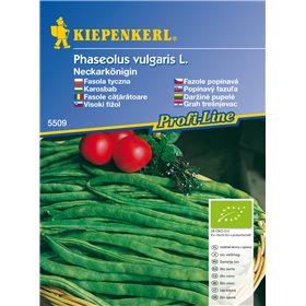 http://www.semena-rostliny.cz/11191-thickbox/popnav-fazole-neckarknigin-bio-semena-fazole-bio.jpg