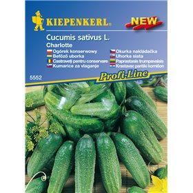 http://www.semena-rostliny.cz/11228-thickbox/okurka-nakldaka-charlotte-f1-semena-nakldakov-okurky.jpg