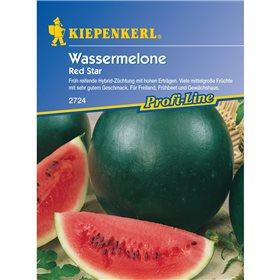 http://www.semena-rostliny.cz/11240-thickbox/vodn-meloun-red-star-semena-vodnho-melounu.jpg