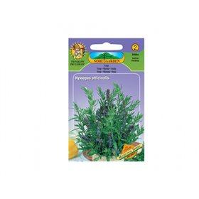 http://www.semena-rostliny.cz/11422-thickbox/yzop-l-k-l.jpg