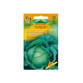http://www.semena-rostliny.cz/11432-thickbox/zel-hl-pozd-holt-sklad.jpg