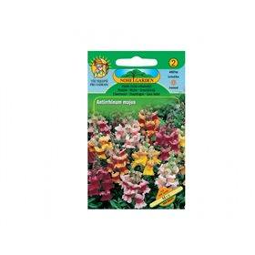 http://www.semena-rostliny.cz/11528-thickbox/antirrhinum-m-hled-k-n-vel.jpg