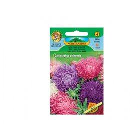 http://www.semena-rostliny.cz/11588-thickbox/cal-ch-astra-plnokv-v-sm.jpg