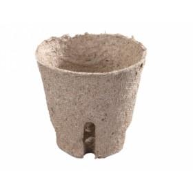 http://www.semena-rostliny.cz/11613-thickbox/kva-t-ral-d6cm-z-l-ez.jpg