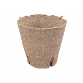 http://www.semena-rostliny.cz/11615-thickbox/kva-t-ral-d8cm-z-l-ez.jpg