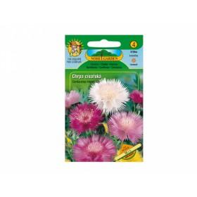 http://www.semena-rostliny.cz/11643-thickbox/centaurea-imp-chrpa-c-sal-sm.jpg