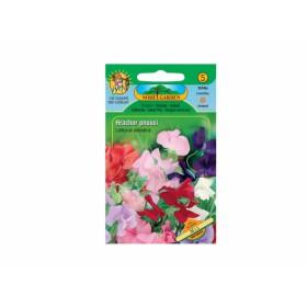 http://www.semena-rostliny.cz/11955-thickbox/lathyrus-odor-hrachor-pn-sm.jpg