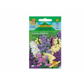 http://www.semena-rostliny.cz/11998-thickbox/limonium-sin-limonka-sm-odr.jpg