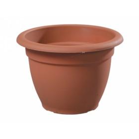 http://www.semena-rostliny.cz/12008-thickbox/kva-t-venezia-d18x12h-pk.jpg