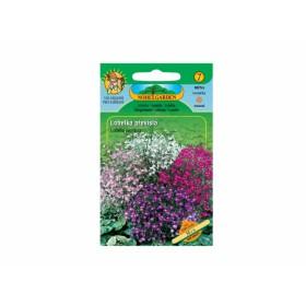http://www.semena-rostliny.cz/12023-thickbox/lobelia-pen-lobelka-pl-sm.jpg