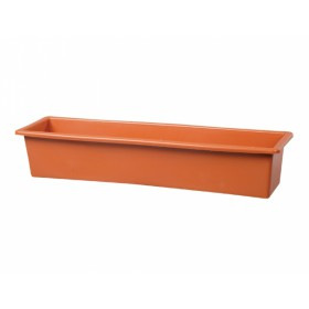 http://www.semena-rostliny.cz/12117-thickbox/truh-gloria-40cm-hlad-dk.jpg