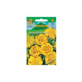 http://www.semena-rostliny.cz/12232-thickbox/tagetes-pat-aks-n-pln-lll-or.jpg