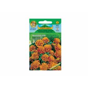 http://www.semena-rostliny.cz/12234-thickbox/tagetes-pat-aks-n-pln-oh.jpg