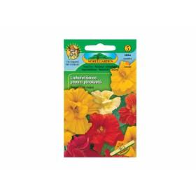 http://www.semena-rostliny.cz/12263-thickbox/tropaeolum-m-lichol-pn-sm-pl.jpg