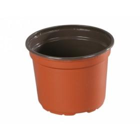 http://www.semena-rostliny.cz/12329-thickbox/kva-t-premium-vcd-d13cm-leh.jpg