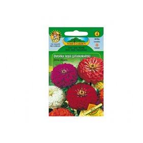 http://www.semena-rostliny.cz/12349-thickbox/zinnia-el-ost-l-jil-sm.jpg