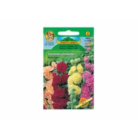 http://www.semena-rostliny.cz/12410-thickbox/althea-ros-proskurn-k-pl-sm.jpg