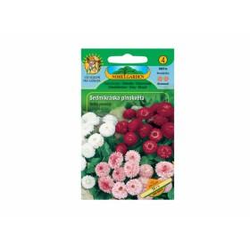 http://www.semena-rostliny.cz/12411-thickbox/bellis-per-sedmikr-ska-pl-sm.jpg