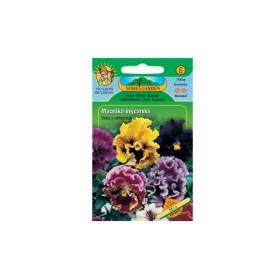 http://www.semena-rostliny.cz/12448-thickbox/viola-x-w-macel-l-v-pl-sm.jpg