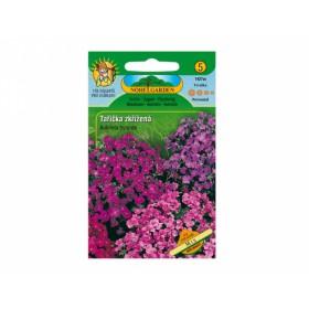 http://www.semena-rostliny.cz/12465-thickbox/aubrietta-hybr-tal-iatka-lei-sm.jpg