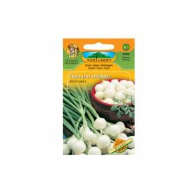 http://www.semena-rostliny.cz/13148-thickbox/cibule-j-b-pompei-lahl-dkov.jpg