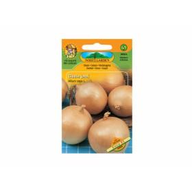 http://www.semena-rostliny.cz/13160-thickbox/cibule-j-lll-unico-f1.jpg