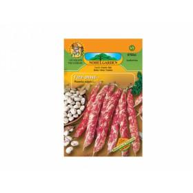 http://www.semena-rostliny.cz/13356-thickbox/fazol-tyat-mel-borlotto-di-vigevano.jpg