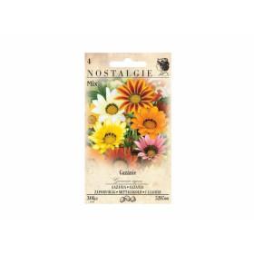 http://www.semena-rostliny.cz/13427-thickbox/gazania-rigens-gazanie-je-sm.jpg