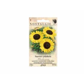 http://www.semena-rostliny.cz/13465-thickbox/helianthus-an-sluneatnice-je-ll.jpg