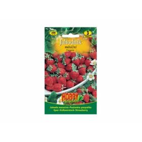 http://www.semena-rostliny.cz/13630-thickbox/jahodn-k-ma-s-atn.jpg