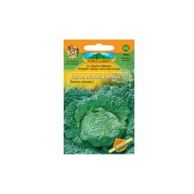 http://www.semena-rostliny.cz/13672-thickbox/kapusta-hl-r-raketa-rychl.jpg